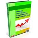 Strategia marketingowa przedsiębiorstwa na przykładzie firmy