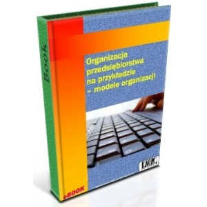 Organizacja przedsiębiorstwa na przykładzie. Modele organizacji